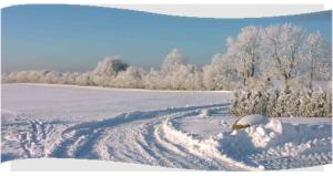 Rahmen_winter